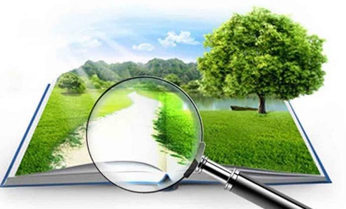 Кадастровая стоимость земли сельскохозяйственного назначения: от чего зависит, как происходит оценка и какие нужны документы