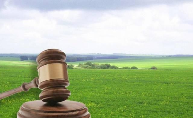 Как купить земельный участок у администрации района или города, либо получить бесплатно