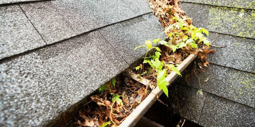 Как почистить желоба на крыше. чистка и ремонт водосточных желобов. очистка водостоков с помощью подручных средств