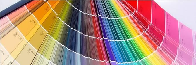 Применяем колер для покраски стен