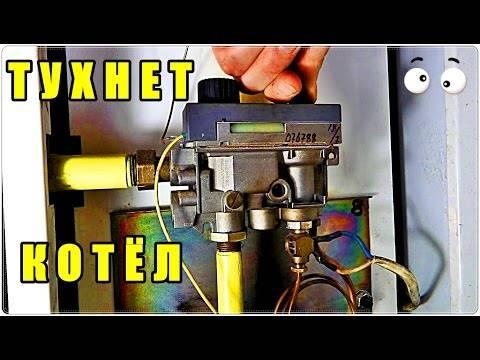 Достоинства и недостатки газовых котлов Данко + инструкция по эксплуатации и отзывы владельцев
