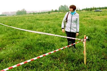 Сведения об отступах от границ земельного участка как заполнять