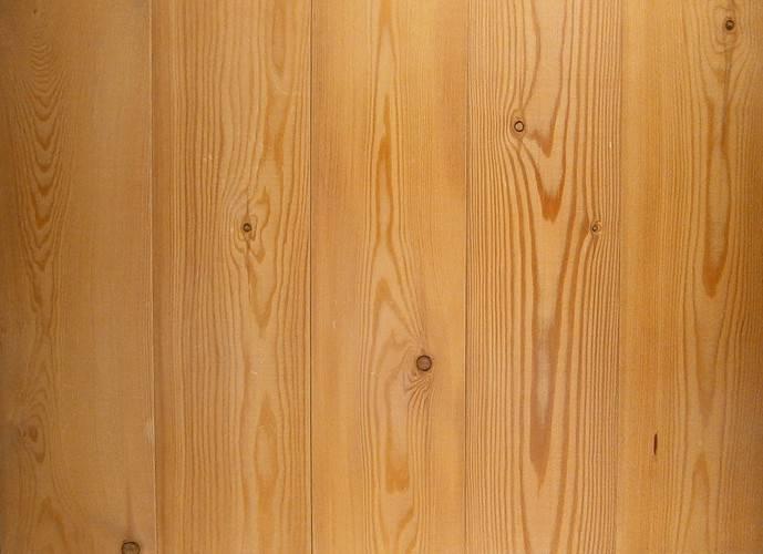 Дуб пушистый (14 фото): где растет в крыму, описание, применение