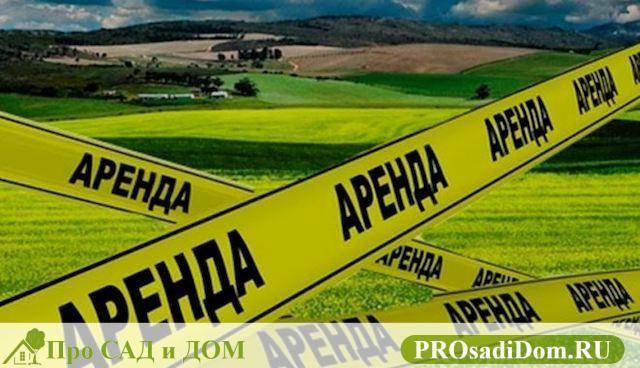 Договор аренды земельного участка на 11 месяцев: образец и особенности составления юрэксперт онлайн