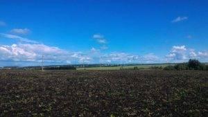 Как купить землю сельскохозяйственного назначения?