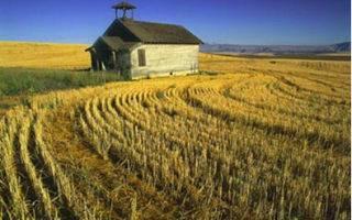 Можно ли строить дом на землях сельхозназначения в 2021 году | твой-юрист