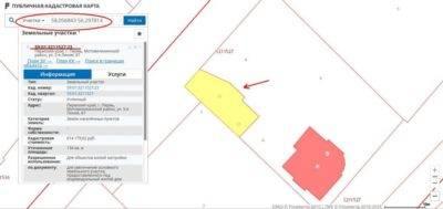 Как узнать кадастровый номер земельного участка по фамилии владельца