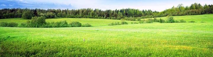 Организация снт на землях сельскохозяйственного назначения для ведения садоводства. что можно и что запрещено делать и строить на таких участках?