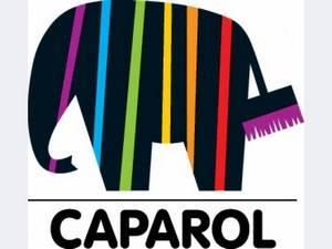 Усиленная акриловая фасадная краска caparol capamix muresko premium