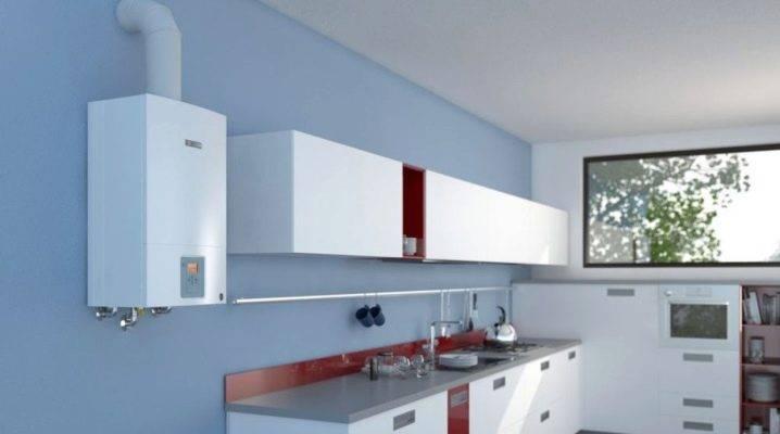 Домашний газовый котел baxi 24 квт: инструкция по установке двухконтурного настенного прибора + отзывы владельцев и цены