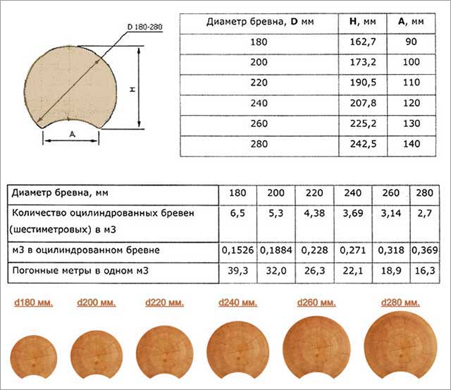 Строительное бревно – классификация, размеры и форма
