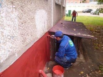 Чем покрасить деревянный забор для долговечности: выбор пропитки, краски