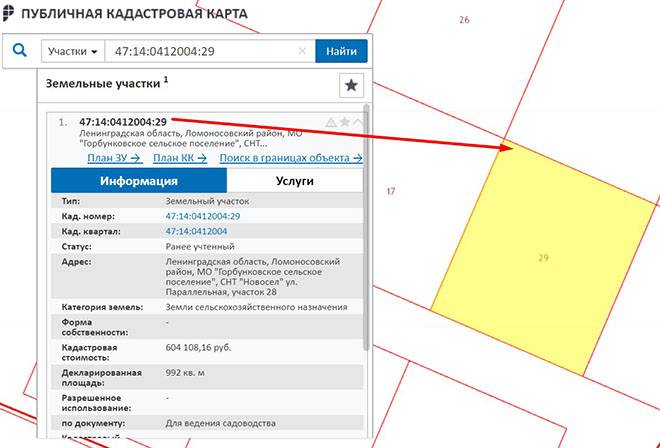 Как узнать размеры и площадь участка по кадастровому номеру