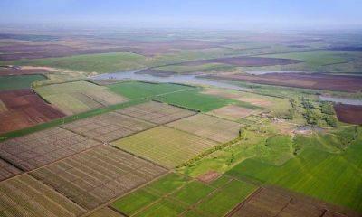 Оформление земельного участка в собственность, если он в аренде: грамотный переход права