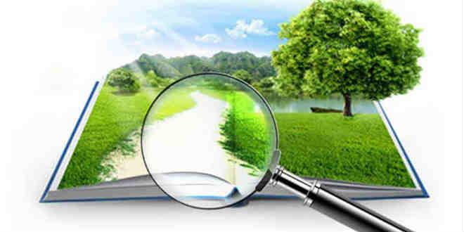 Возможно ли снижение кадастровой стоимости земельных участков и как уменьшить стоимость земли самостоятельно?