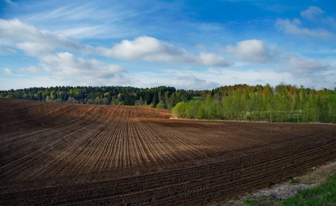 Земли лпх: что это такое, как разрешено использовать такой земельный участок, что он представляет из себя и как подразделяется по видам