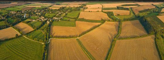 Лпх на землях сельскохозяйственного назначения: полевые участки и их особенности
