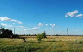 Юридический эксперт подробно расскажет, как взять земельный участок в аренду с правом выкупа