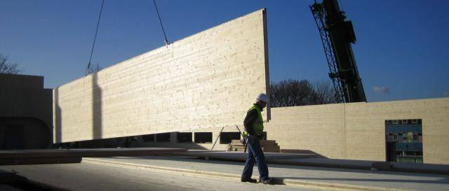 Что такое деревянные стеновые панели: состав, расчеты и технология строительства дома