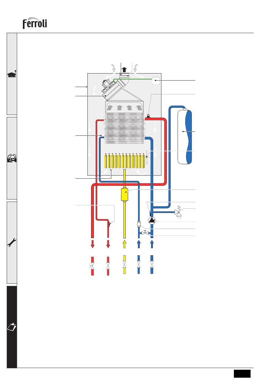 Достоинства и недостатки двухконтурных газовых котлов ferroli + инструкция по эксплуатации и отзывы владельцев