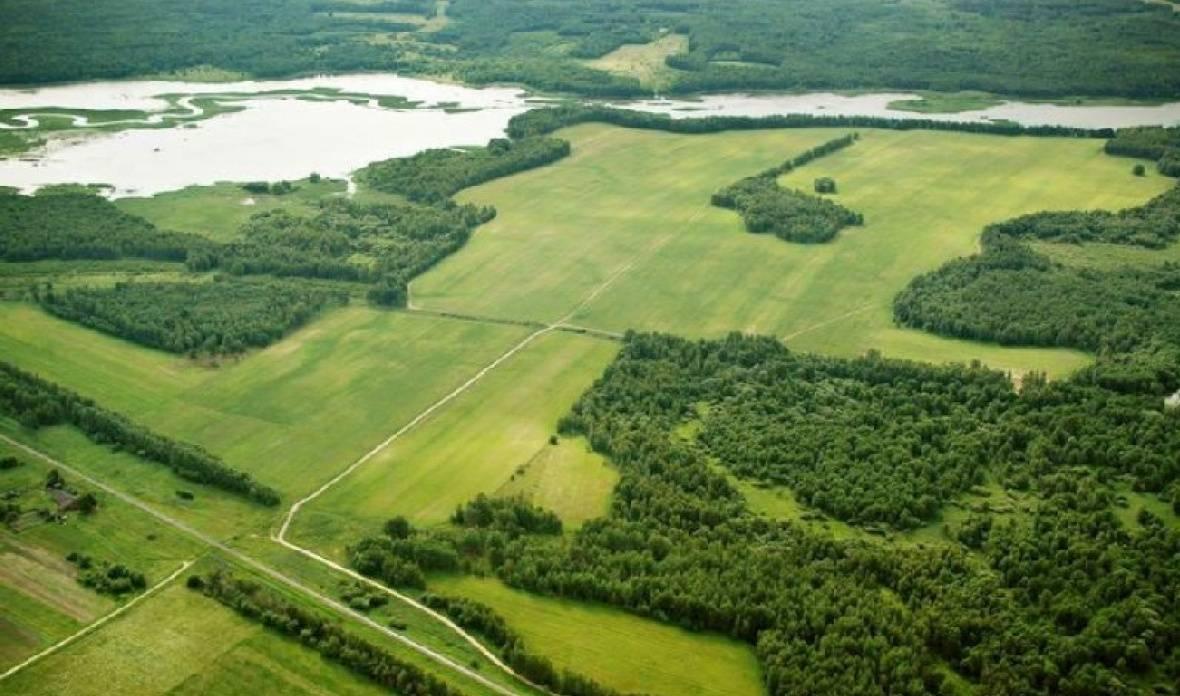 Процедура и порядок оспаривания кадастровой стоимости земельного участка