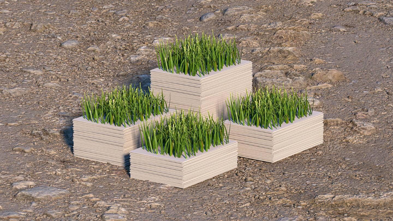 Процедура оформления садового участка в собственность