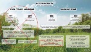 Участки земли под ЛПХ и ИЖС — в чем разница между ними?